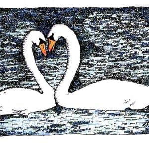 Swans Heart Song of Songs