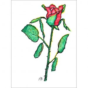Rose Bud Red created using strokes that are the original letters of Proverbs 31:10-31, by Judy Rey Wasserman