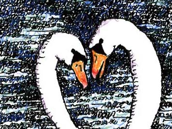 Swan Lovers-Song of Songs Close Up of Heads