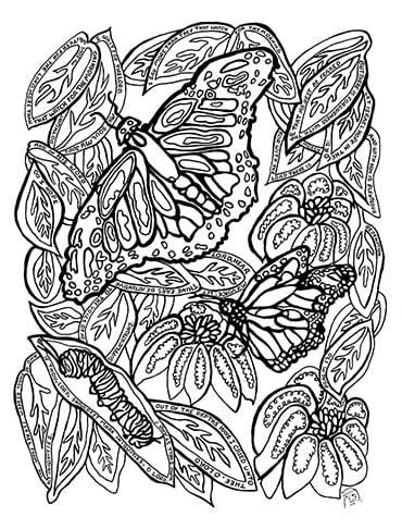 Psalm103 Butterflies