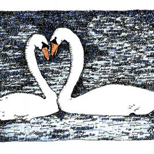 Swan Lovers -Song of Songs (Multi-Color) by Judy Rey Wasserman